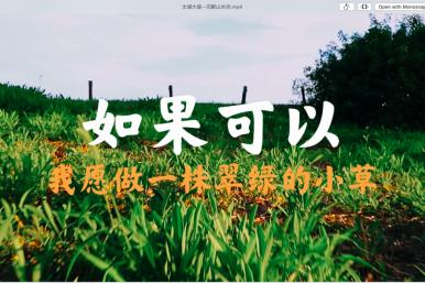 太湖大堤–沉醉山水间–达芬奇调色+剪辑