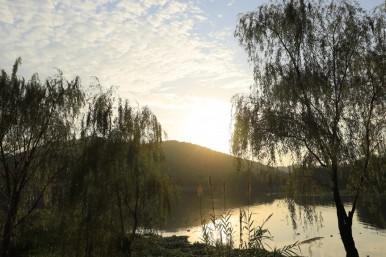 无锡长广溪–忘川彼岸版秋景
